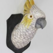 Cockatoo Wall Mount