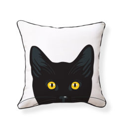 yellow-eyes-cat1