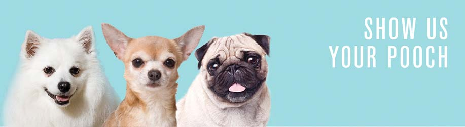 NEW-show-us-your-pooch-banner