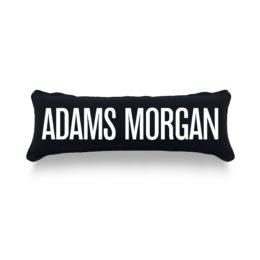 ADAMS-Lumbar_Pillow_WEB