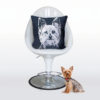 Yorkshire Terrier Pillow - chair